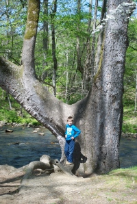 Me by a Tree Next to The River at Mountain Farm Museum in The Smokies