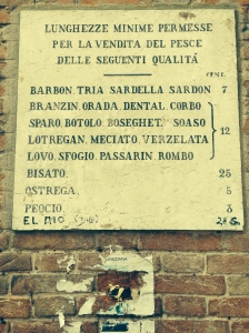 "On a column at the fish market, there is this list in stone of the legal length of fish.  Sardines (Sardon) must be 7 centimeters, mussels (Peocio) must be 3 cm and someone left a penis joke: ""El Mio 3.7cm  (Mine's 2 inches:)"